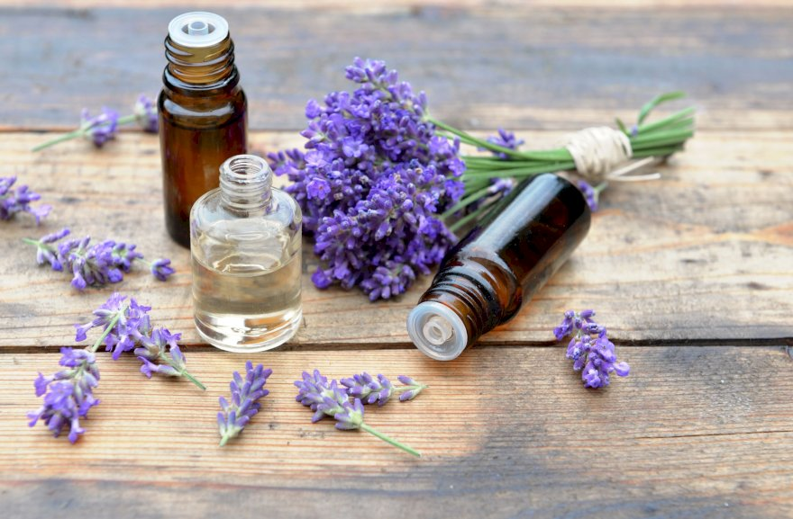 Benefits of Lavender oil and How to use it